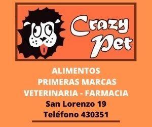 Crazy Pet